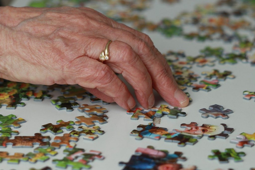 puzzling, hobby, pieces of the puzzle